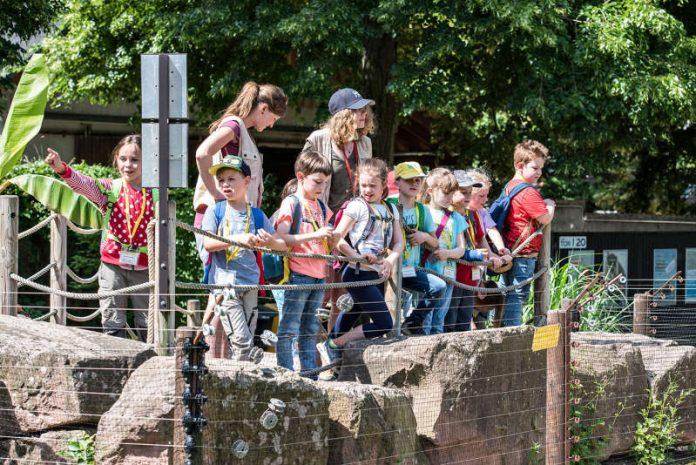 Pfingstferien mit der Zooschule Heidelberg (Susanne Reichardt/Zooschule Heidelberg)