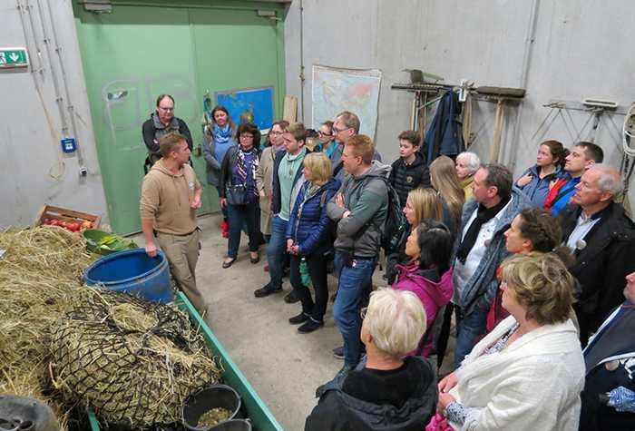Tierpfleger Julian Brück erklärte im Heulager, wie sich die grauen Riesen ernähren.