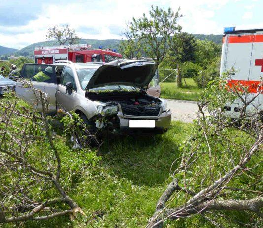 Der PKW prallte nach Polizeiangaben an einen Mandelbaum (Foto: Feuerwehr Neustadt)