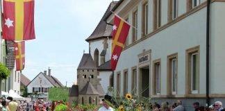 Festumzug (Foto: Tourist Service GmbH Deidesheim)