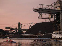 """Teilnehmer von """"All you can row"""" 2019 im Karlsruher Rheinhafen (Foto: Dietmar Kup)"""