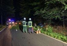 Verkehrsunfall auf der K 23 (Foto: Presseteam der Feuerwehr VG Lambrecht)