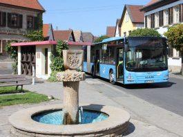 Neue Buslinie (Foto: Kreisverwaltung Bad Dürkheim)