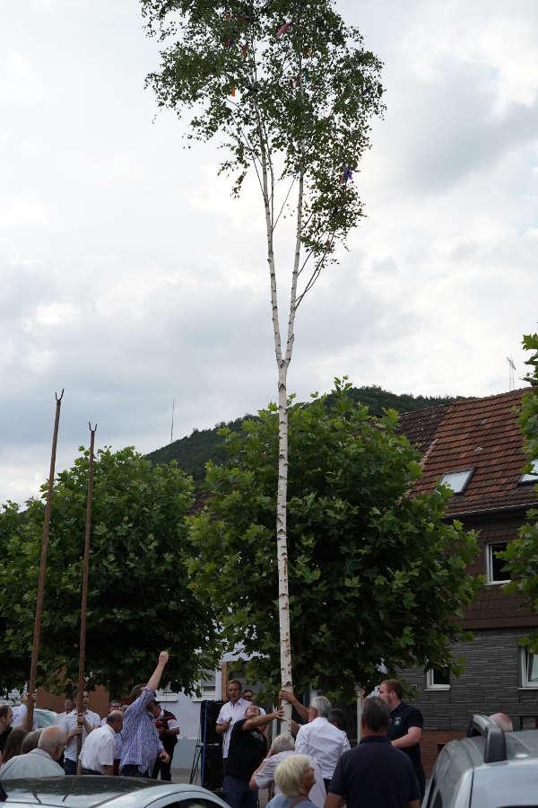 Lambrecht Gäsbock-Kerwe 2019 (Foto: Holger Knecht)