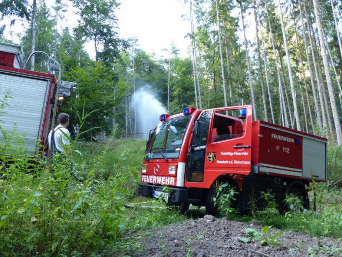 Die Feuerwehr im Wald (Foto: Feuerwehr Neustadt)
