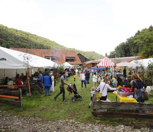 Hoffest in Altleiningen (Foto: Melanie Hubach)