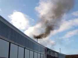 Der Rauch wurde als Schadensfeuer missgedeutet (Foto: Feuerwehr Neustadt)