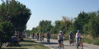Radfahrer beim Erlebnistag Deutsche Weinstraße (Foto: Pfalzwein e.V.)