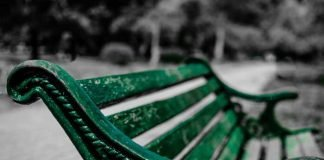 Symbolbild, Park, Parkbank, Grün, Vordergrund, leer (pxhere)