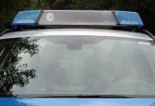 Symbolbild, Polizei, Auto von vorne© on Pixabay