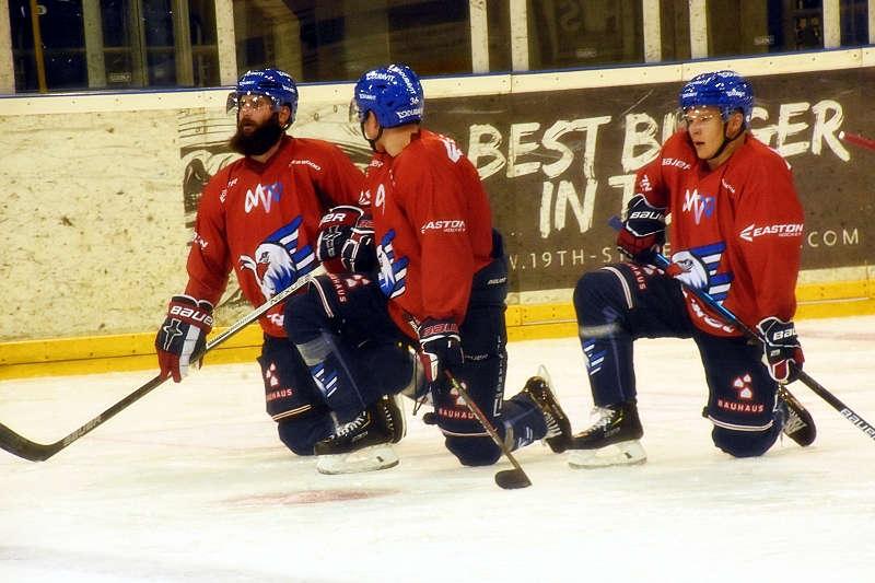 Mannheim Adler Trainingsauftakt (Foto: LT)
