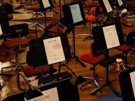Symbolbild Orchester (Foto: Pixabay)