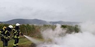 Flächenbrand (Foto: Feuerwehr Neustadt)