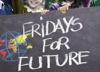 Symbolbild Fridays for Future (Foto: Pixabay/Gerd Altmann)
