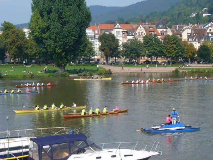 Rudern gegen Krebs-Regatta in Heidelberg (Foto: Hannes Blank)