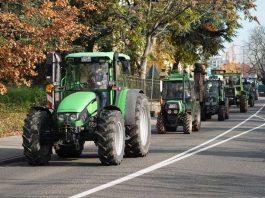 Neustadt Traktor Demo 2019 (Foto: Holger Knecht)