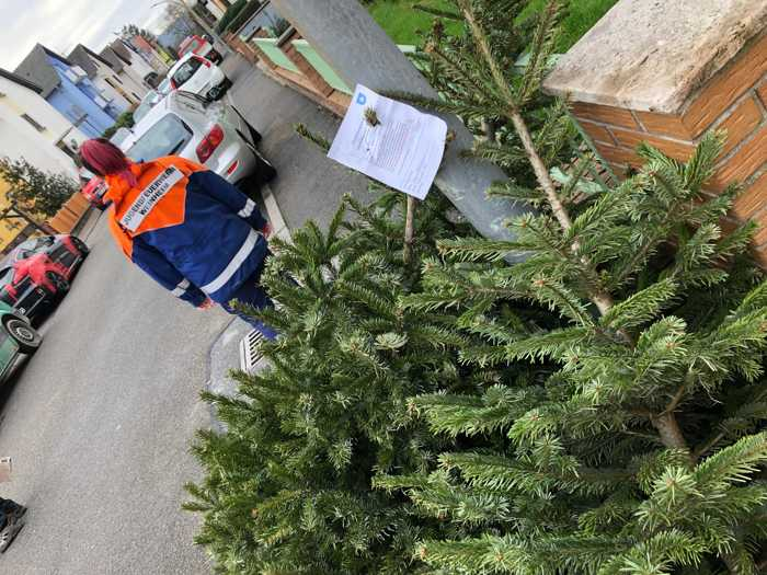 Die Jugendfeuerwehr sammelt die Weihnachtsbäume ein