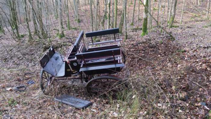 Niederscheld - Zwei junge Frauen verunglücken bei Dillenburg mit ihrer Kutsche.