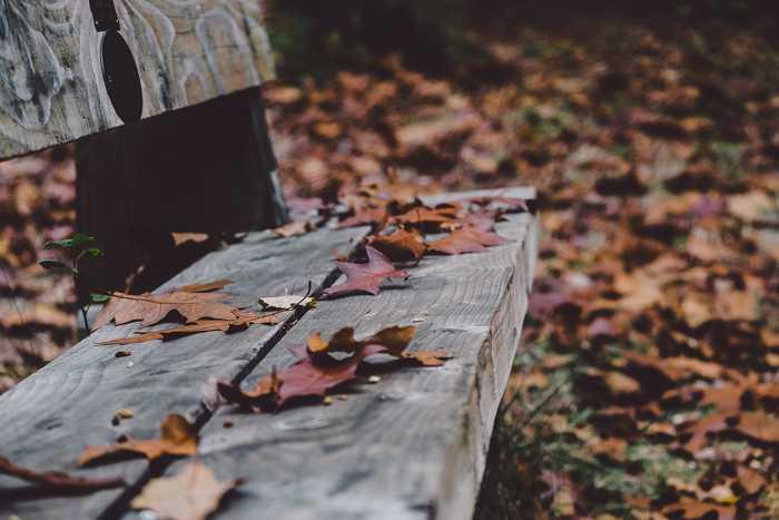 Symbolbild, Park, Holzbank, Natur, Draussen, Herbst, bunte Blätter, Dämmerung, Unheimlich © on Pixabay