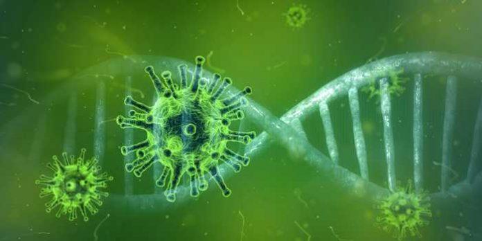 Coronavirus Quelle: Pixabay