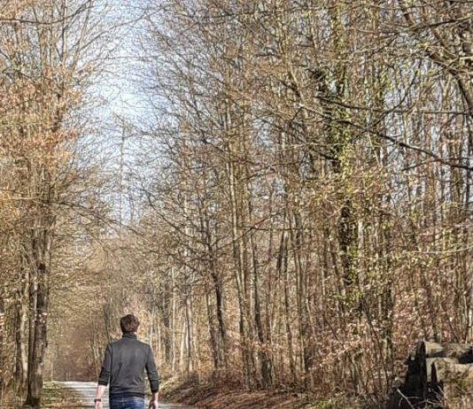 Spaziergang im Wald (Foto: Forst BW)