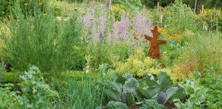 Nützlich, schön und artenreich: Garten der Familie Setzepfand in Sippersfeld, Gewinner des Wettbewerbs 2019 (Foto: Setzepfand)