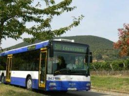 Symbolbild Palatina-Bus (Foto: Palatina Bus GmbH)