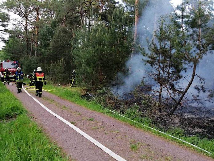 Flächenbrand am Trimm-Dich-Pfad (Foto: Feuerwehr Haßloch)
