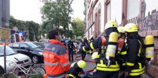 Frankfurt Hamburger-Allee: 9 Katzen von Feuerwehr Frankfurt am Main gerettet