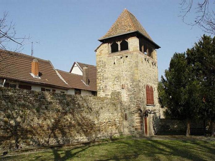 Blick auf die Freinsheimer Stadtmauer