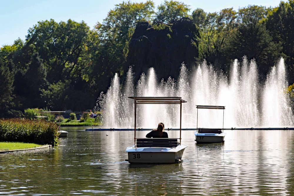 Gondoletta-Fahrt über Stadtgarten- und Schwanensee (Foto: Timo Deible/Zoo Karlsruhe)