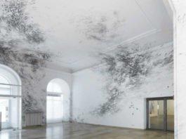 Julia Steiners beeindruckende Bilderwelt