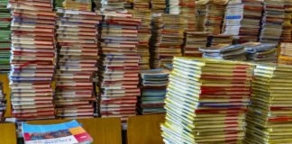 Symbolbild Schulbücher (Foto: Pixabay/FelixMittermeier)