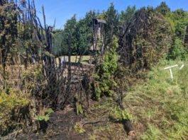 Die Feuerwehr wurde zu einem Flächenbrand alarmiert (Foto: Feuerwehr)