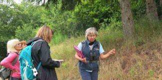Zeigen die Vielfalt des Biosphärenreservats Pfälzerwald-Nordvogesen: Die Biosphären-Guides, hier Andrea Frech mit einer Gruppe bei Gräfenhausen (Foto: Biosphärenreservat)
