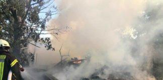 Abgelagerte Bahnschwellen und Hecken standen in Brand (Foto: Feuerwehr Neustadt)