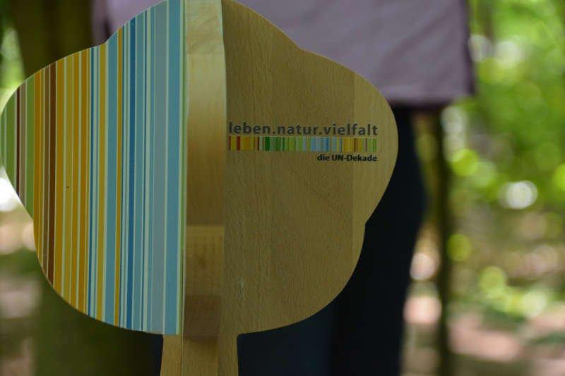 Auszeichnung – Skulptur (Holzbaum) (Foto: Kreisverwaltung Germersheim)