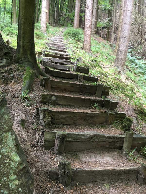Treppenstufen im Pfälzerwald (Foto: BfT Maikammer)
