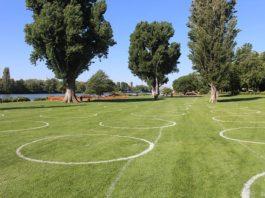 Bewährtes Konzept: Bereits über Pfingsten wurden die Kreise auf der Neckarwiese aufgemalt – und dann auch ausgiebig genutzt. Nun werden die Kreise zum Beginn der Sommerferien wieder aufgezeichnet. (Foto: Stadt Heidelberg)