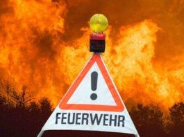 Symbolbild Feuerwehr Waldbrand