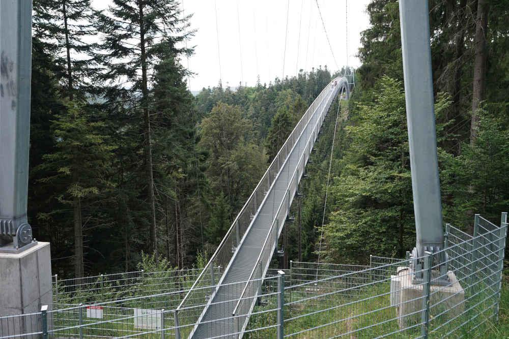 Bad Wildbad Baumwipfelpfad Schwarzwald (Foto: Holger Knecht)