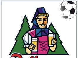 Logo Rothaus Pokal (Foto: bfv)