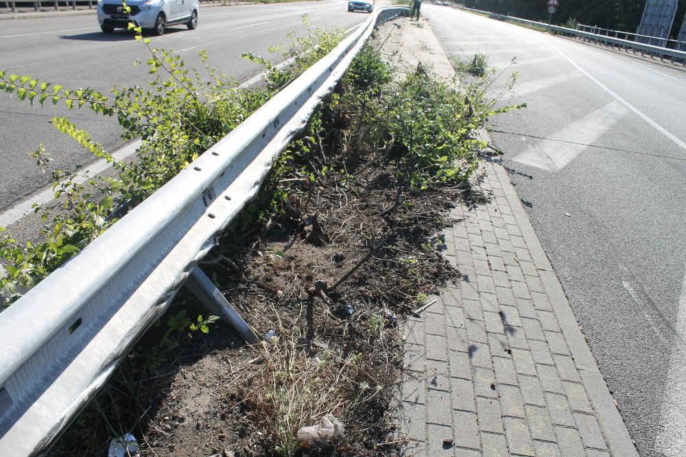 Unfallstelle auf der B 9 (Foto: Polizei RLP)