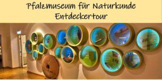 Entdeckertour im Pfalzmuseum für Naturkunde (Foto: Pfalzmuseum für Naturkunde)