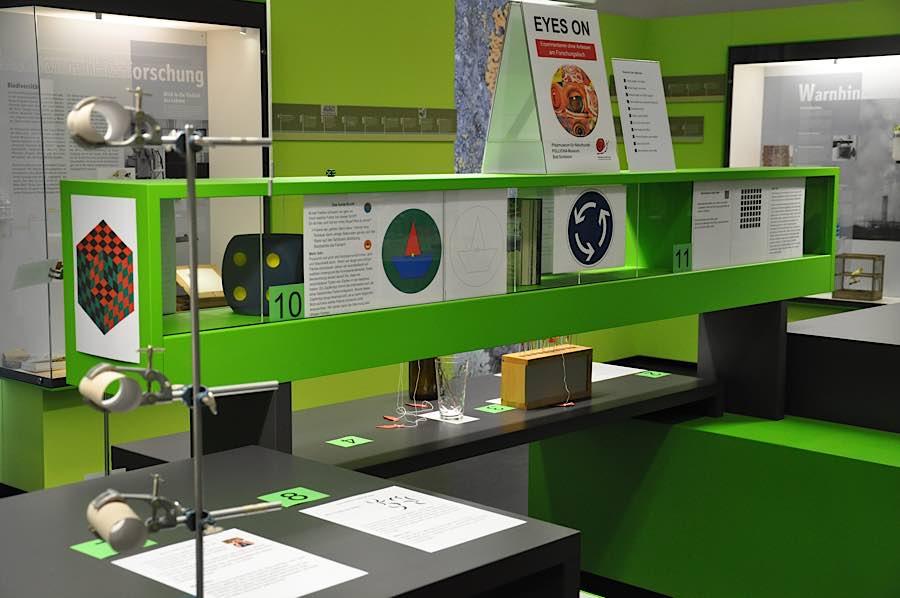 Experimente am Forschen-Tisch (Foto: Pfalzmuseum für Naturkunde)