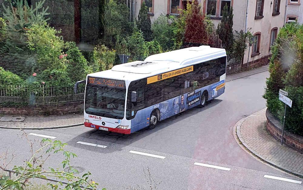 Bus Linie 517 (Foto: Holger Knecht)