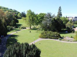 Der Weinheimer Schlosspark (Foto: Stadtverwaltung Weinheim)