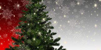 Symbolbild Weihnachten Weihnachtsbaum (Foto: Pixabay/Gerd Altmann)