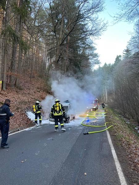 PKW-Brand (Foto: Presseteam der Feuerwehr VG Lambrecht)