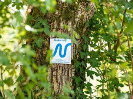 Markierungszeichen Neckarsteig (Foto: Touristikgemeinschaft Odenwald/Barbara Wagner)